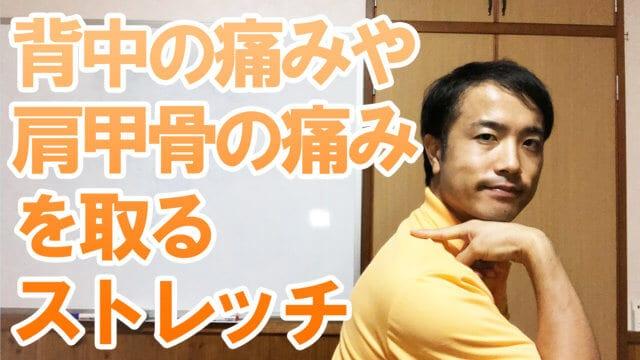 【宮崎 整体】背中の痛みや肩甲骨の痛みを取るストレッチ