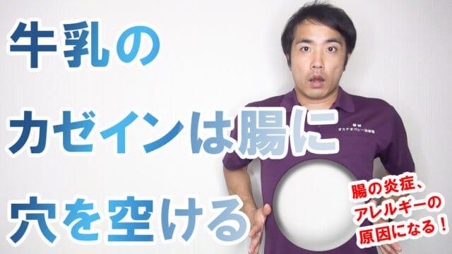 牛乳のカゼインは腸に穴を空けるs(1)